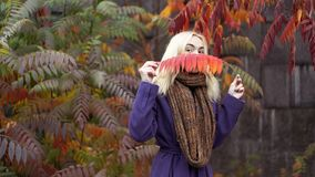 Half length portrait of young female in the autumn park with colorful leaves stock photos