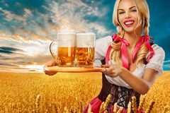 Young sexy Oktoberfest girl - waitress, in Munich wearing a traditional Bavarian dress, serving big beer mugs on golden Royalty Free Stock Photos