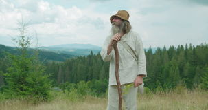 The half-length view of the old traveller with long grey hair and beard observing the mountain view. He is leaning on. The cane while holding the field flowers stock video