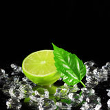 Half Lime Royalty Free Stock Images
