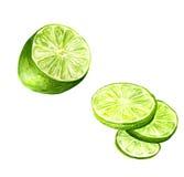 half limefrukt arkivfoton