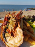 Half lobster on the beach Stock Images