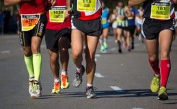 Half Marathon Royalty Free Stock Image