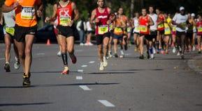 Half Marathon Royalty Free Stock Photo