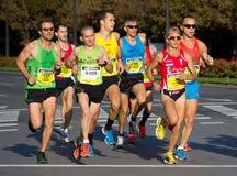 Half maraton royaltyfri foto