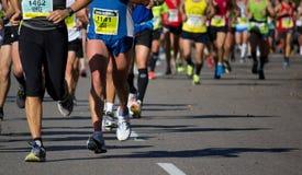 Half maraton Arkivfoto