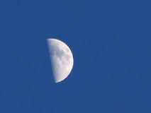 Half moon. The moon - phase 2 Stock Image