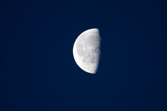 Half moon Stock Photography
