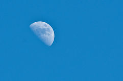 Half moon Royalty Free Stock Image