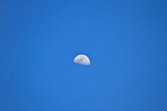 Half  moon in blue sky Stock Photos