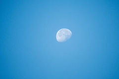 Half moon in morning with clear blue sky Royalty Free Stock Photography