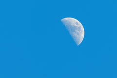 Half Moon Phase during day. On a clear blue sky royalty free stock photos