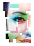 Half Of Face Of The Beautiful Woman Royalty Free Stock Image