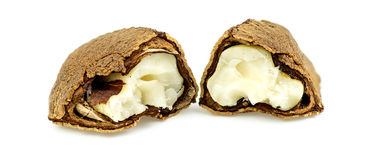 Half open brazil nut with shell and flesh Royalty Free Stock Photography