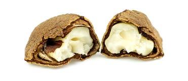 Half open paranoot met shell en vlees Royalty-vrije Stock Fotografie