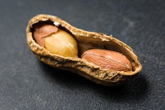Half Opened Peanut Shell Showing Contents Close Up View Royalty Free Stock Photo