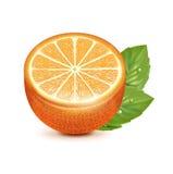 Half of orange fruit with leaf  on white Royalty Free Stock Photography