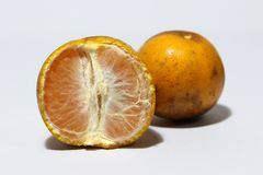 A half of peeled orange and one orange does not peel isolated on white background. Orange is a round juicy citrus fruit with a tough bright reddish-yellow rind royalty free stock photos