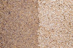 Half picture whole grain barley and half oatmeal cereal top view. Half picture whole grain barley and half oatmeal cereal. background, top view. healthy living stock photos