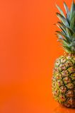 Half of pineapple in right side on orange background, vertical shot. Picture presents half of pineapple on orange background, vertical shot Stock Photo