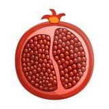 Half of pomegranate icon, cartoon style stock illustration