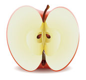 Half red apple Stock Photography