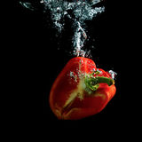 Half red pepper in water Stock Photos