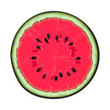 Half of ripe watermelon, top view sketch style vector illustration Royalty Free Stock Images