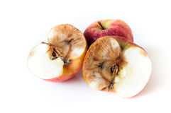 Half of rotten apple. Halves of rotten apple on white background Royalty Free Stock Image