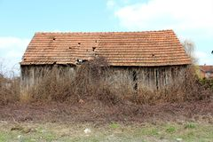 Half ruinous barn surrounded with overgrown dried vegetation. Half ruinous barn with damaged roof tiles surrounded with overgrown dried vegetation and uncut Royalty Free Stock Images
