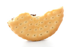 Half sandwich biscuit Royalty Free Stock Images