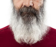 Half senior face with long white beard Stock Images