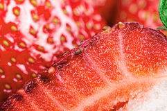 Half of the strawberry on the background of strawberr Stock Images