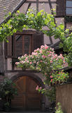 Half-timbered Haus mit tendriled Rosen Stockfotos