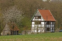 Half-timbered house with cherry blossom in April in Holperdorp, Germany Royalty Free Stock Image