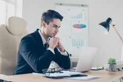 Half-turned portrait of focused confident busy hard-working lead royalty free stock photos