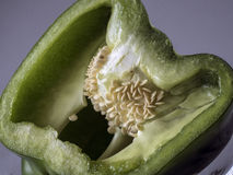 Half view of green pepper with seeds Royalty Free Stock Photography