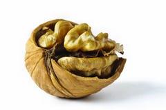 Half a walnut Stock Photography