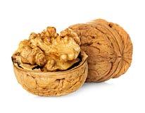 Half walnut kernel and whole walnut isolated on white Stock Photos