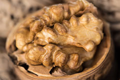 Half walnut kernels Stock Image