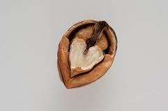 Half walnut Stock Photos