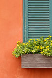 Half of Window with flower box and orange wall. Half of Window with flower box and old orange wall Royalty Free Stock Images