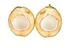 Half young coconut. Nam Hom cultivar of young coconut of Thailand was cut in half Stock Images