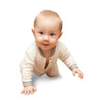 Halfjaarlijkse oude baby Stock Foto's