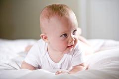 Halfjaarlijkse oude baby met het staren met blauwe ogen Royalty-vrije Stock Afbeeldingen