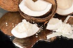 Halfs кокоса, частей coconat, кокоса шелушится на черном bac Стоковые Фотографии RF