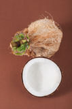 Halfs of coconut  on background Stock Image