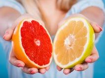 Halfs de citrinos vermelhos amarelos da toranja nas mãos humanas Fotos de Stock