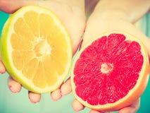 Halfs des agrumes rouges jaunes de pamplemousse dans des mains humaines Image libre de droits