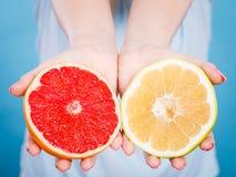 Halfs des agrumes rouges jaunes de pamplemousse dans des mains humaines Photo stock